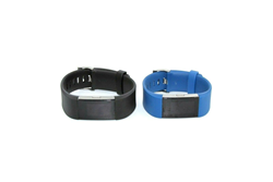Picture of Broken Lot of 2 PCS Fitbit Charge 2 Heart Rate + Fitness Wristband | 1105